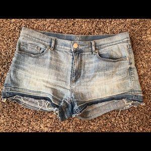 Loft cut off shorts